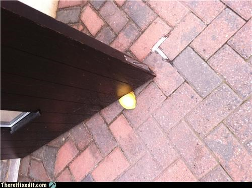 I Think This Doorstop is a Lemon