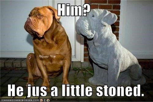 Him?  He jus a little stoned.