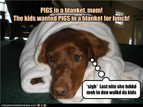 correction,FAIL,hearing,labrador,misheard,noms,pigs in a blanket,sigh,upset
