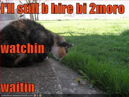 I'll still b hire bi 2moro watchin waitin