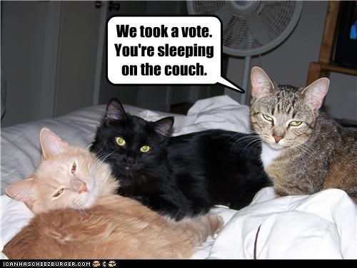 We took a vote.   You're sleeping on the couch.