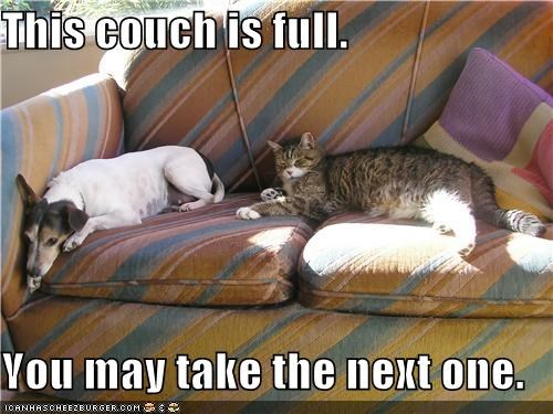 This couch is full.