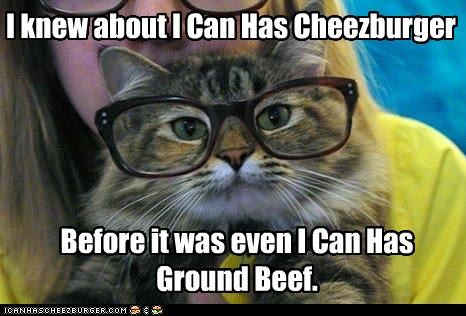 about,before,caption,captioned,cat,glasses,ground beef,hipster cat,i can has,icanhascheezburger,IRL,knew