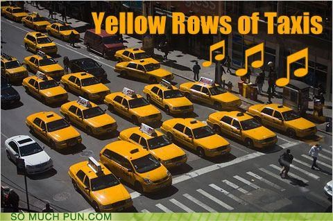 anthem,homophone,literalism,rose,rows,similar sounding,state,taxies,texas,yellow,yellow rose of texas