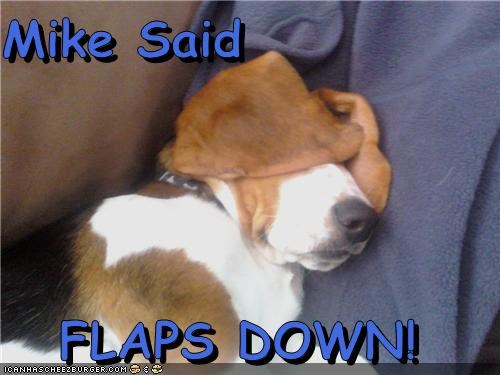 Mike Said  FLAPS DOWN!