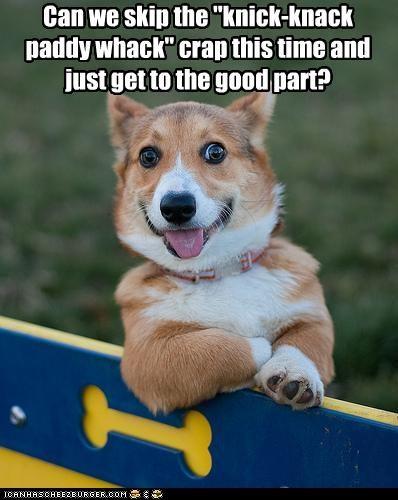 best of the week,bone,corgi,do want,good,Hall of Fame,i has a hotdog,noms,nursery rhyme,part,reward,skip,song