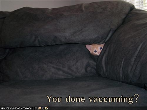 You done vaccuming?