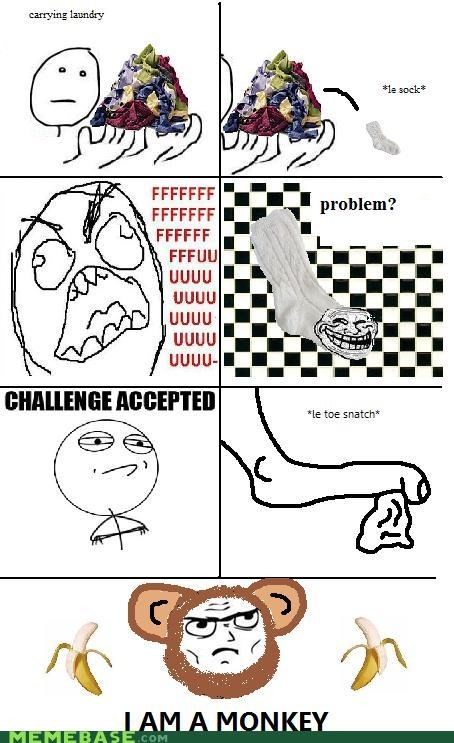 Challenge Accepted,laundry,monkey,Rage Comics,sock