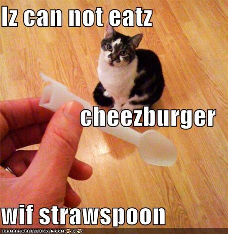 Iz can not eatz  cheezburger wif strawspoon