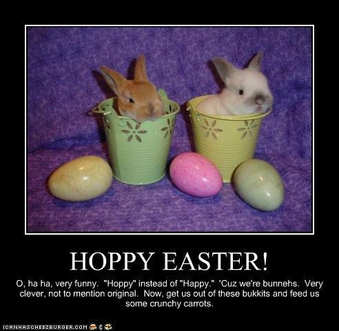 Hoppy Easter, Everybuddy!