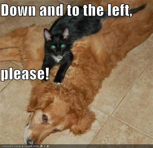 Down and to the left,  please!