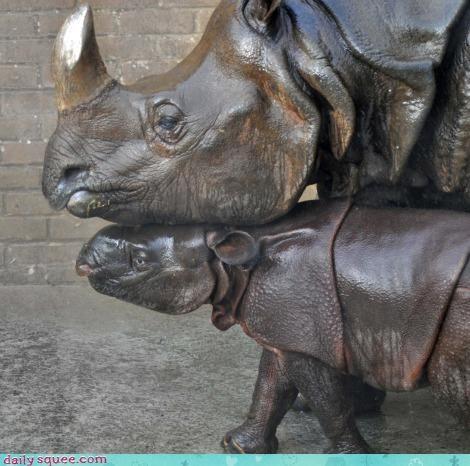 angle,baby,calf,family,love,mother,nuzzling,rhino,rhinoceros,rhinos,sweet,sweeter,sweetest