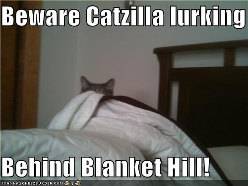 Beware Catzilla lurking  Behind Blanket Hill!