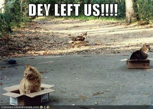DEY LEFT US!!!!