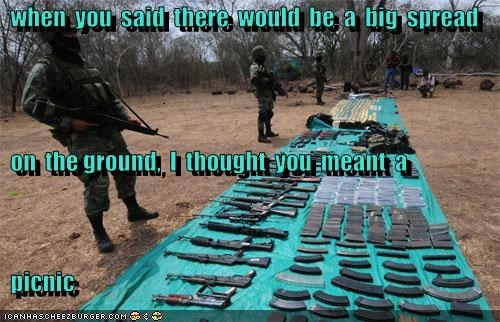 guns,political pictures