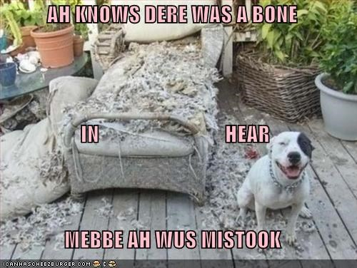 AH KNOWS DERE WAS A BONE  IN                              HEAR MEBBE AH WUS MISTOOK