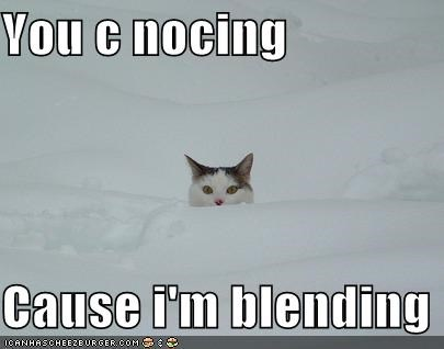 You c nocing  Cause i'm blending