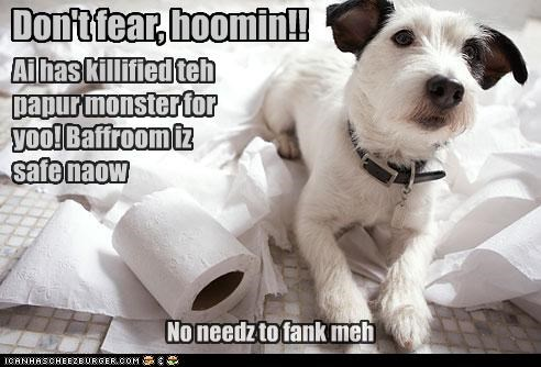 bathroom,comforting,dont,dont-fear,fear,human,killed,me,mixed breed,monster,no need,now,paper,reassuring,safe,scottish terrier,thank,toilet paper