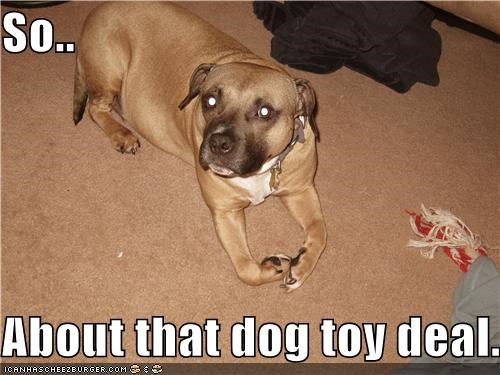 So..  About that dog toy deal..