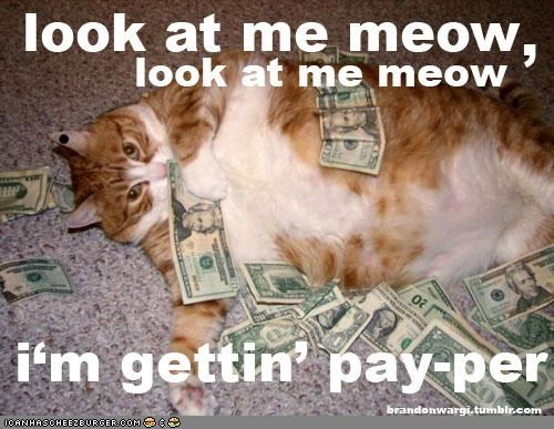 Chris Brown Kitteh Iz Ballin'!