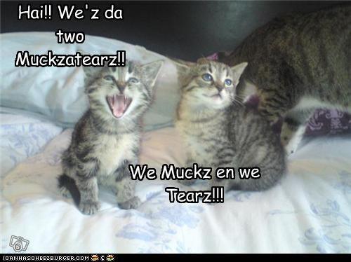 Hai!! We'z da two Muckzatearz!!
