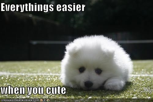 Everythings easier  when you cute
