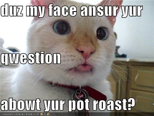 duz my face ansur yur qwestion  abowt yur pot roast?