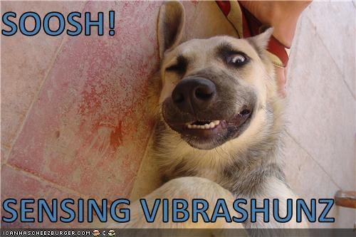 Shoosh. Sensing Der Vibrashunz