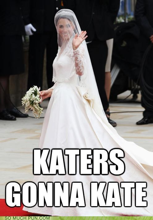 haters gonna hate,kate middleton,meme,royal wedding,wedding,wedinator