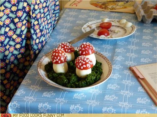 cute,eggs,hard boiled eggs,kale,Mushrooms,tomato