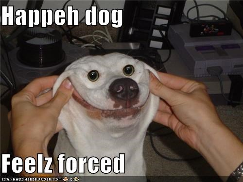 Happeh dog  Feelz forced