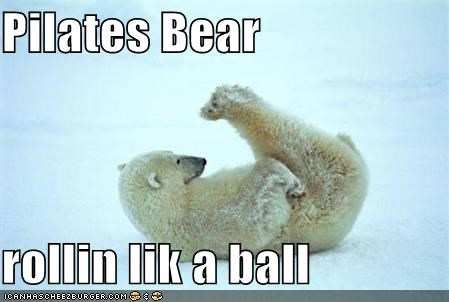 Pilates Bear  rollin lik a ball