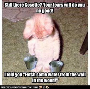 Still there Cosette? Your tears will do you no good!