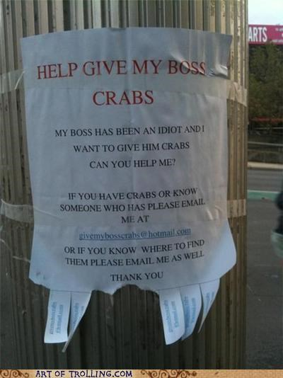 boss,crabs,IRL,seriously,the worst,true