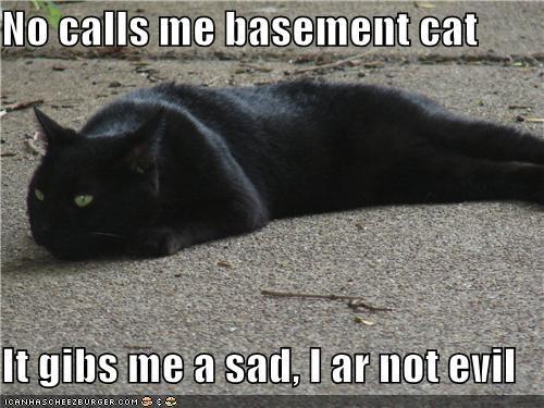 No calls me basement cat  It gibs me a sad, I ar not evil
