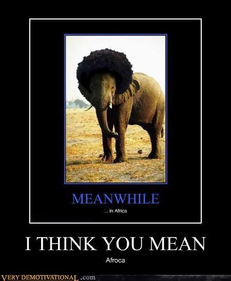 afroca,elephant,photoshop,pun
