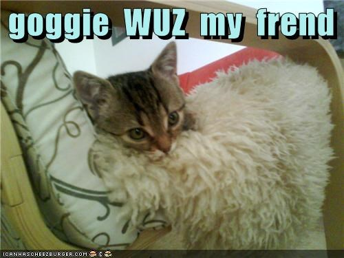 goggie  WUZ  my  frend
