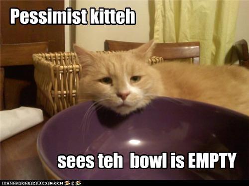 Pessimist kitteh