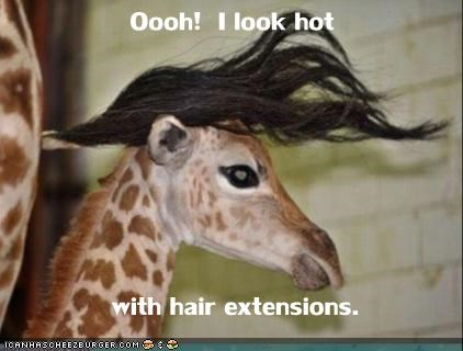 Oooh!  I look hot     with hair extensions.
