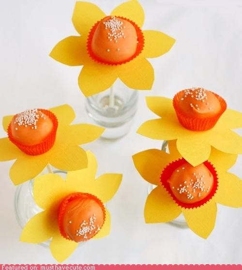 cake pops,daffodils,epicute,flowers,paper,prange,springtime,yellow