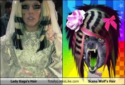 Lady Gaga's Hair Totally Looks Like Scene Wolf's Hair
