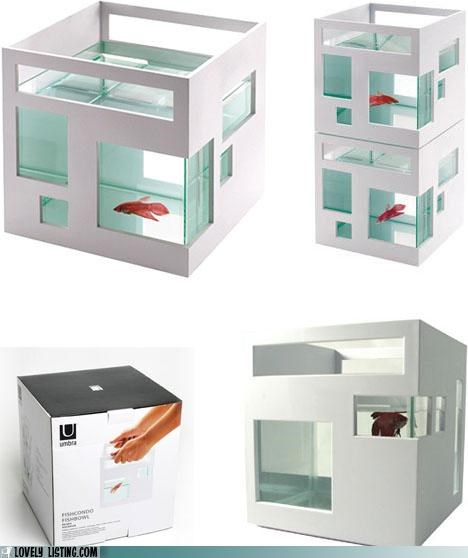 design,fish,Fishbowl,modern