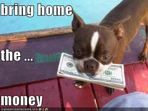 bring home the ... money