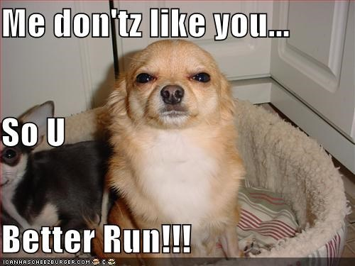 Me don'tz like you... So U Better Run!!!