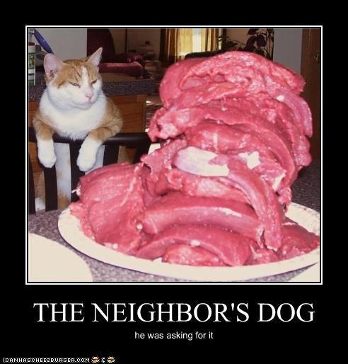 THE NEIGHBOR'S DOG
