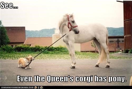 See...  Even the Queen's corgi has pony.