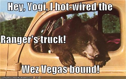 bear,bound,caption,captioned,hot wired,las vegas,ranger,truck,vegas,yogi,yogi bear
