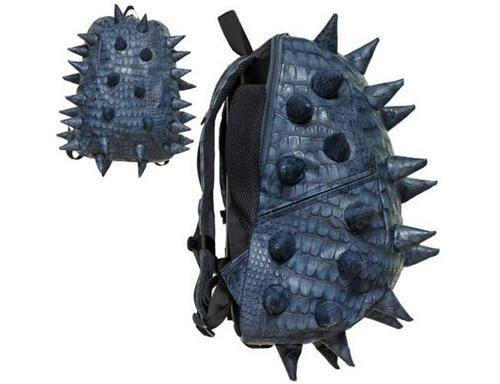 Backpack of the Day