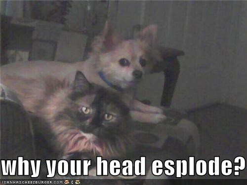 why your head esplode?