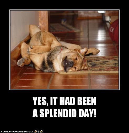 YES, IT HAD BEEN A SPLENDID DAY!